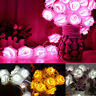 Xmas 20 LED Rose Flower String Lights Fairy Wedding Party Garden Decor Christmas