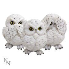 Nemesis Now U2549G6 Three Wise Owls Figurine Set Decoration - White