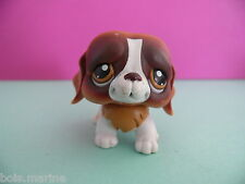petshop chien saint bernard blanc marron / white brown dog N° 229