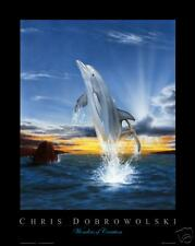 "NEW! Dolphin I 16x20"" Art Print Poster by Dobrowolski"
