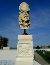 Schädel , skull mit Oktopus aus Horn geschnitzt auf geschnitztem Beinsockel  !