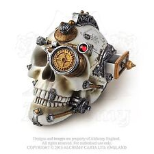AE V-4 Erasmus Darwin's Steam Cerebrum - Resin Skull - New!