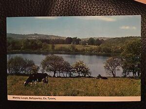 Martray Lough Ballygawley Vintage Postcard,Northern Irish Co Tyrone Landscape