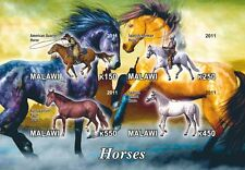 ** Horses American Quarter, Spanish Horse s/s  Malawi 2012 mint MNH IMPERF #C279