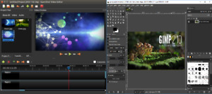 PROFESSIONAL VIDEO + PHOTO EDITING 2 IN 1 SOFTWARE PACK GIMP 2 + OPEN SHOT