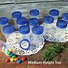 """24 Pill Jars 2+"""" tall Screw Blue Cap 1 ounce Favor Size Container #3812 USA New"""