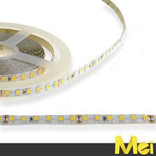 BN06 striscia LED 24V luce FREDDA 6000K 120 SMD 2835 IP20 NON IMPERMEABILE 5MT