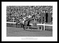 Brigadier Gerard 2000 Guineas 1971 Horse Racing Photo Memorabilia (146)