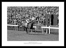 More details for brigadier gerard 2000 guineas 1971 horse racing photo memorabilia (146)