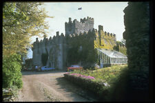 382050 bargey Castle Irlande A4 papier photo