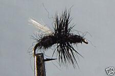 10 x Mouche Sèche Fourmi Noire H12/14/16/18 truite mosca LOT black ant fly dry