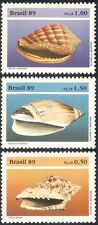 Brazil 1989 Sea Shells/Marine/Nature/Molluscs/Animals/Wildlife 3v set (b7945)