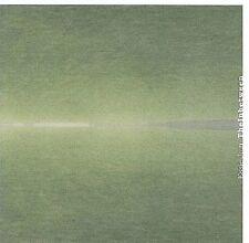 The Inbetween by Essie Jain (CD, May-2008, Ba Da Bing Records)