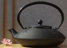 Cast Iron black calligraphy Tetsubin teapot kettle 0.8L