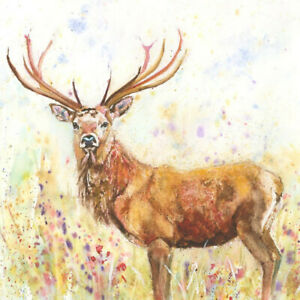 Fine Art Print of SUMMER STAG original watercolour by HELEN APRIL ROSE   621