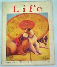 Boston Terrier Fox Terrier Pekingese Reprint Life Magazine 1926 Dickey Cover