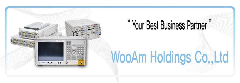 WooAm Holdings Co.,Ltd. Rentech Div