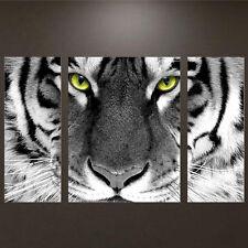 DIY 5D Diamond Embroidery Tiger Animal Painting Cross Stitch Craft Home Decor