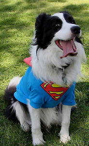 Official DC Comics Superman dog costume shirt with cape 45cm XXL DOGS - New