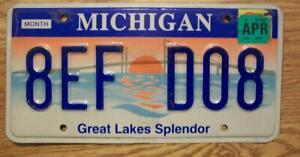 SINGLE MICHIGAN LICENSE PLATE - 2004 - 8EF D08 - Great Lakes Splendor