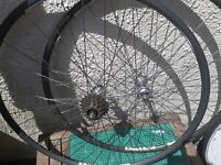Campagnolo Hubs On Pianni Rims, Mavic, Classic Wheels,