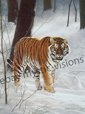 Charles Frace SIBERIAN TIGER  CANVAS Art