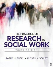 The Practice of Research in Social Work by Engel Schutt 3rd Edition