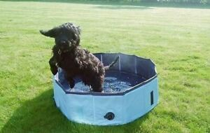 Pet Heat Relief Cool Down Dog Pool - Large30x160cm - Not Just For Dogs