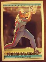 1992 Donruss Montreal Expos Baseball Card #355 Andres Galarraga