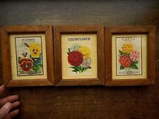 Reproduction Flower Seed Packets Advertising Pictures set of 3 Burts Seed Framed
