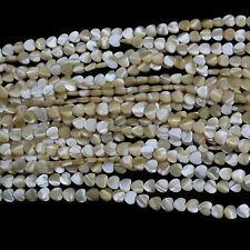 8mm Natural Heart Shell Beads Loose Gemstone Beads for Jewelry Making Strand 15""