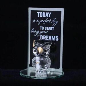 Graduation Gift Glass Owl Plaque Ornament Keepsake Passing Exams Present