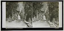 Suisse Swiss Giessbac Plaque stereo Ferrier Soulier Lévy positive 8,5x17 ca 1865