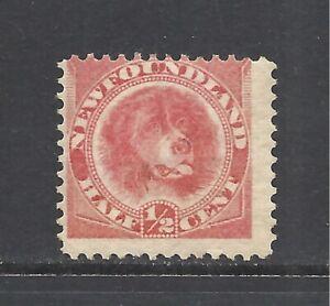 NEWFOUNDLAND SCOTT 56 MNH FINE - 1887 1/2c ROSE RED ISSUE   CV $12.50