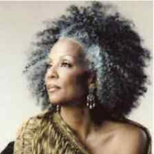 Silver 20'' Afro Kinky Curly Human Hair Braiding Bulk Extensions 4oz