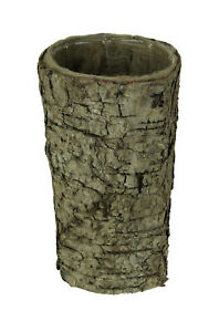 Natural Birch Wood Vase with Coco Coir and Plastic Liner