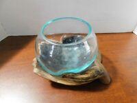 .Hand Blown Molten Glass Fish Bowl or a Terrarium Vase on Teak Wood Hand Palm-3