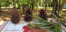 "Pine Cones 4"" 5"" Crafts Decor Wreaths Qty 35"