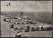 AD1959 Lucca - Provincia - Lido di Camaiore - Spiaggia - Bagnanti