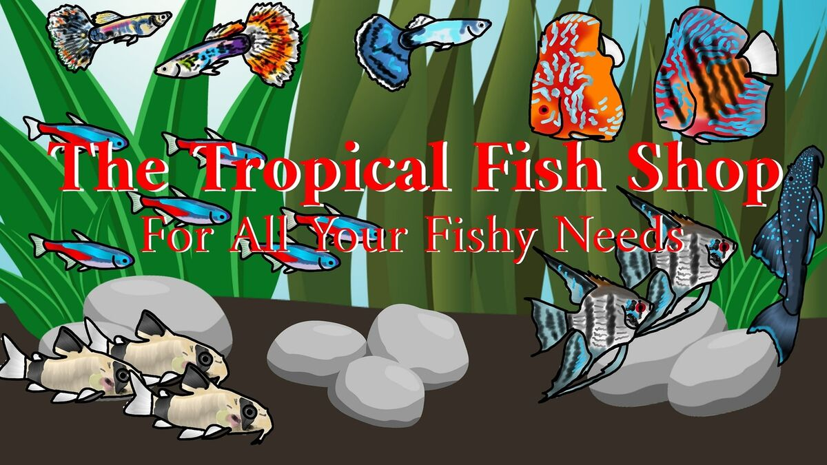 The Tropical Fish Shop