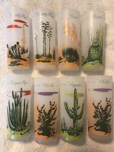 Vintage Blakely Gas and Oil Arizona Cactus 8 Highball Glasses