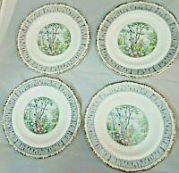 Royal Albert Silver Birch Salad Plates Bone China Set Of 4 Pieces replacements
