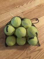 New Penn Pressure Less Tennis Balls 12 Balls In Mesh Carrying Bag