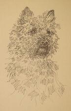 Cairn Terrier Dog Art Portrait Print #55 Kline adds dog name free. WORD DRAWING