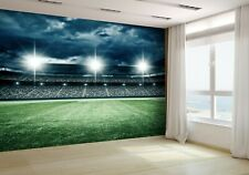 The Imaginary Soccer Stadium Wallpaper Mural Photo 54318773 premium paper