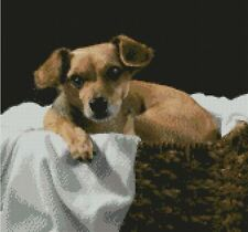 "Terrier Puppy Dog Counted Cross Stitch Kit 12"" x 11.25"" 30.5cm x 29cm"