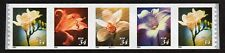 USA, Scott # 3478-3481 (3481A), COIL STRIP OF 5 WITH PNC #B2111 - ORCHIDS, MNH