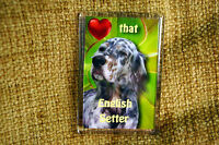 English Setter Gift Dog Fridge Magnet 77x51mm Gift Xmas Stocking Filler