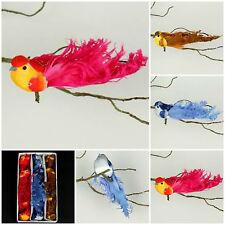 12 Déco Oiseaux 3 fidèle à la nature Animals Véritable Plumes Polystyrène
