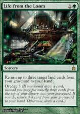Life from the Loam (Rare) Near Mint Normal English - Magic the Gathering